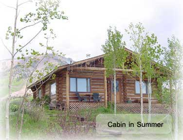 Amazing hunting summer and wedding cabin in gunnison colorado for Cabins near crested butte co