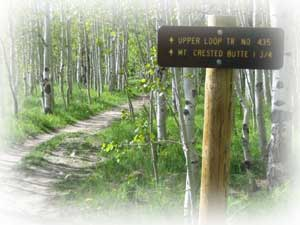 crested butte-spring bike trail in Crested Butte