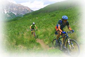 crested butte-summer bike trail  in Crested Butte