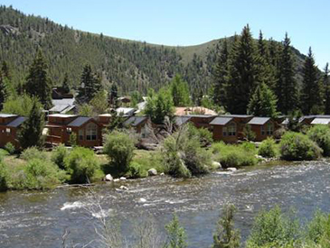 petfriendly cabin for rent near crested butte