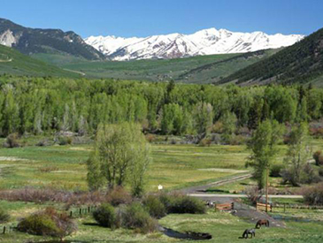 cabin for rent near crested butte